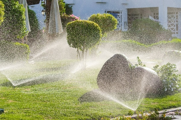 An array of sprinklers water a green lawn