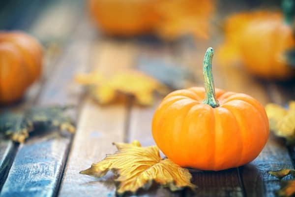 A small pumpkin sits on a deck in autumn